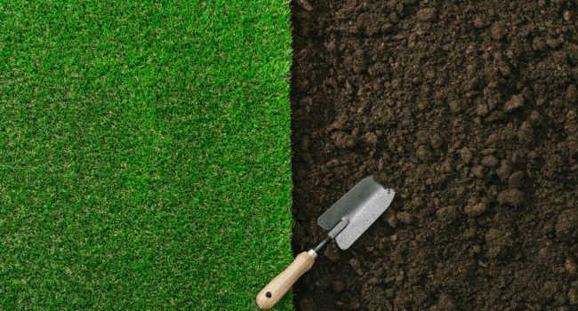 turf-fertilization
